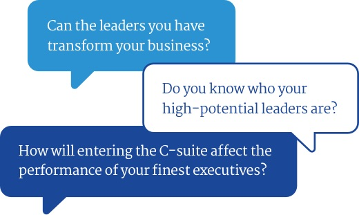 Executive & Leadership Effectiveness image