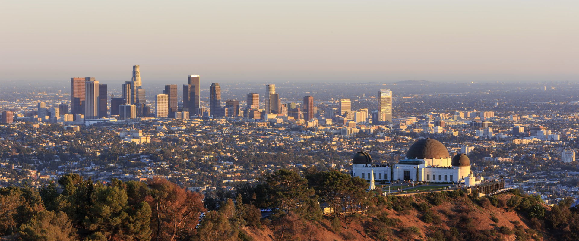 Director Joins Stanton Chase Los Angeles Office Cover Image